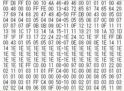 bin_data.jpg